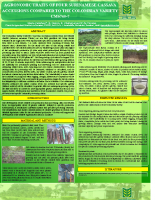 Suriname Cassava compared poster CFCS 2015 (ENG)